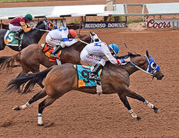 ruidoso downs gay personals Ruidoso downs track photographer gay harris peaks out from the large crowd at ruidoso down monday for the all american futurity.